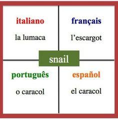 #CelebrateMonday learning #languages #teachers