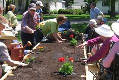 Garden Therapy: perché fa bene e 5 modi per praticarla a casa - Foglie TV