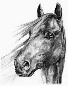 5 caballos dibujados a lapiz corriendo - Buscar con Google