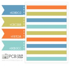 Color & Pattern Crush –  5.17.2013