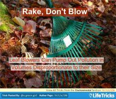 Environmental - Rake, Don't Blow