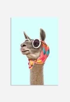 Art-Poster Pop art surrealist - Fashion Lama, by Paul Fuentes Wall Art Prints, Fine Art Prints, Canvas Prints, Canvas Artwork, Wallpapers Rosa, Lama Animal, Paul Fuentes, Llama Arts, Jungle Art
