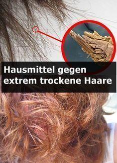 Hausmittel Fur Extrem Trockenes Haar Beauty Hacks Haare Trockene Haare Hausmittel Trockene Haare Extrem Trockene Haare