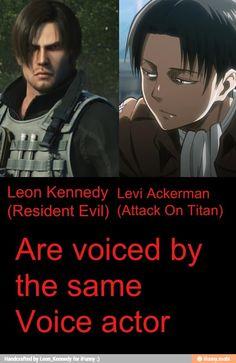 Levi Ackerman Funny | levi ackerman meme