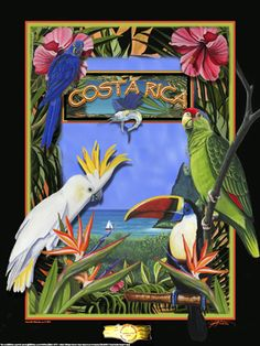 costa rica travel poster - Google Search