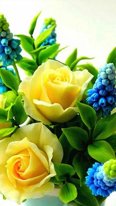 Luv yellow roses, all Time favorite, especially since I'm from Texas! Flora Flowers, Beautiful Rose Flowers, Bunch Of Flowers, Flowers Nature, Amazing Flowers, Colorful Roses, Gras, Yellow Flowers, Red Roses
