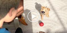 The Present: An Animated Short Film by Jacob Frey - Dog Milk Film D, Love Film, Dog Milk, Video Film, Cat Design, Short Film, I Love Dogs, Graffiti, Street Art