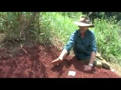 Introduction To Permaculture Design by Geoff Lawton Sustainable Gardening, Hydroponic Gardening, Hydroponics, Gardening Tips, Geoff Lawton, Farming Techniques, Permaculture Design, Water Management, Urban Homesteading