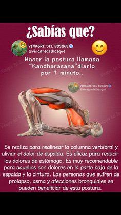 Daily Health Tips: Search results for 5 Iyengar Yoga, Ashtanga Yoga, Yoga Mantras, Yoga Kundalini, Yoga Meditation, Fitness Del Yoga, Health Fitness, Yoga Routine, My Yoga