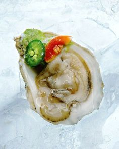 Oysters with Serrano Chile, Avocado, and Cherry Tomatoes Recipe