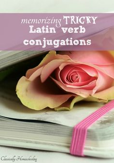 After years of teaching children Latin, I have come to a conclusion. It's hard memorizing those tricky Latin Verb Conjugations.