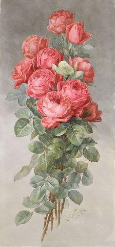 Paul de Longpre Spray of American Beauty Roses, 1898 - Spanierman Gallery, NYC Vintage Rosen, Art Vintage, Vintage Images, Art Floral, Vintage Flowers, Vintage Floral, Flower Prints, Flower Art, Rose Art