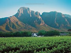 Mighty Mother City | YCLAD – A South African Pop Culture Magazine  I LIVE IN THE MOST BEAUTIFUL PLACE IN THE WORLD Stellenbosch Winelands, Western Cape, South Africa  http://www.bestplacestotravel.us/2017/05/19/mighty-mother-city-yclad-a-south-african-pop-culture-magazine/