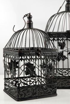 use a vintage looking bird cage to decorate tables, or put cards in.