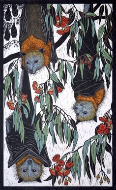 GREY-HEADED FLYING FOX 70.5 X 43 CM    EDITION OF 50 HAND COLOURED LINOCUT ON HANDMADE JAPANESE PAPER $1,250