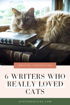Wanna meet 6 amazing writers and their cats? These cats have not only become a part of their writing aesthetic, but have also served as writing life inspiration and story ideas. The black and white photography might even inspire your own writing. Head to the blog to read more. | #poets #artists #writing #cats