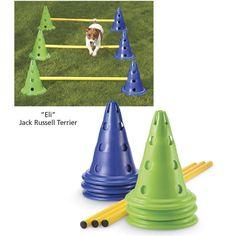 Dog Training Tips Backyard Dog Agility Kit Agility Training For Dogs, Dog Agility, Training Your Dog, Training Tips, Pet Dogs, Dog Cat, Pets, Dog Playground, Dog Games