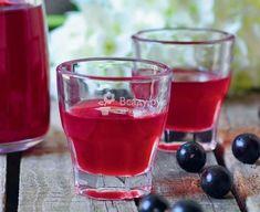 Настойка из черной смородины на спирту рецепт быстрого приготовления. Напиток получится не только вкусным и бодрящим, но и очень полезным и витаминным