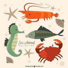 recogida de animales de mar agradable