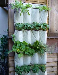 diy projects from instructables! this is a vertical vegetable garden. how clever.