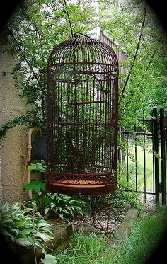 Antique Bird Cage for your secret garden. Create the perfect backdrop with this! | eBay