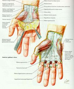 Dupytren's Contracture - http://www.rearmyourselftexas.com/hand/dupytrens-contracture/