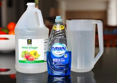 best window cleaner - 2 cups water, 1/4 cup white vinegar and 1/2 teaspoon dish detergent