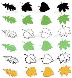 Realistic Graphic DOWNLOAD (.ai, .psd) :: http://jquery-css.de/pinterest-itmid-1000550966i.html ... Leaves set ...  autumn, birch, green, illustration, leaf, maple, nature, oak, outline, plant, poplar, silhouette, tree, yellow  ... Realistic Photo Graphic Print Obejct Business Web Elements Illustration Design Templates ... DOWNLOAD :: http://jquery-css.de/pinterest-itmid-1000550966i.html
