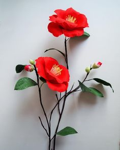 Crepe paper camellia japonica (Kamelien) - handmade botanical art by Ameli Cheng #AmelisLovelyCreations