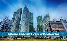 The startups & SMEs are the powerhouses of Singapore. They employ almost two-thirds of the Singaporean workforce. The authorities really try to support these entities. There are a number of #government #grants for #Singapore #companies to help them overcome obstacles in their growth.