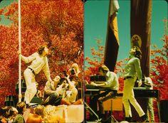 "alenpredanic: "" Doors at Fantasy Fair and Magic Mountain Music Festival (1967). "" The fall colors are amazing."