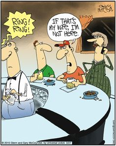 The Flying McCoys Comic Strip, March 27, 2015 on GoComics.com
