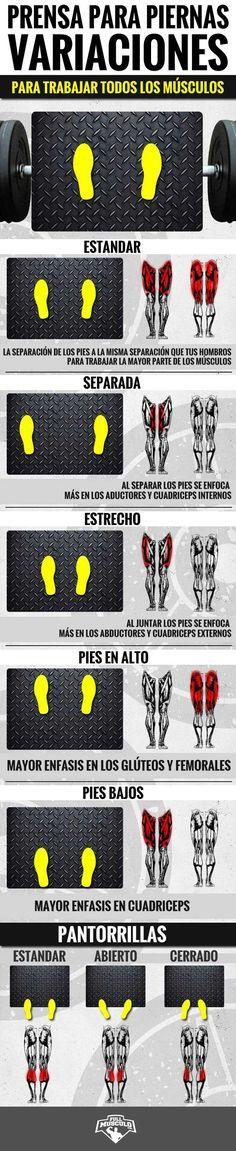 Variaciones para piernas en prensa. Aprende como trabajar los distintos músculos…