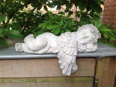 Er is een engel neergestreken in mijn kleine tuin