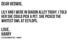 Dear Hedwig, // Love, Harry