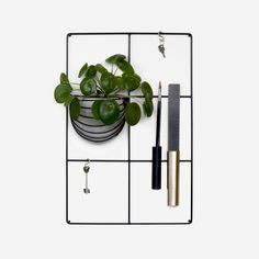 wallment wall grid memo board | elefantöra <3 Nordic Design, Chinese Money Plant, Scandinavian Style, Office Memo, Wall, Metal Grid, Baskets On Wall, Green Wall, Creative Space