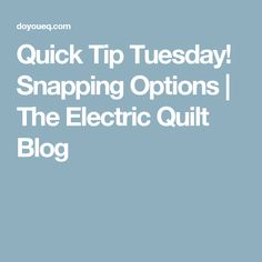 Quick Tip Tuesday! Snapping Options | The Electric Quilt Blog