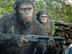 """TavernaPOP!: """"Planeta dos Macacos – O Confronto"""": Novas imagens..."""