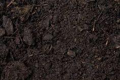 Billedresultat for soil