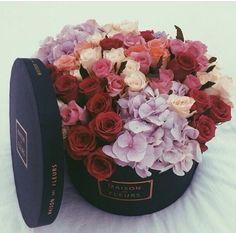 Las flores son muy bonitas y hacen chicas sonrisa.