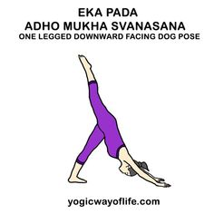 12 best yoga poses in hindi images  yoga poses yoga
