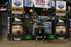 PBR (@PBR) | Twitter Professional Bull Riders, 8 Seconds, Rodeo, Twitter, Cows, Bull Riding, Rodeo Life