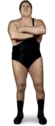 André the Giant - Pro Wrestling - Wikia