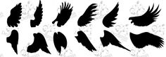 wings silhouettes