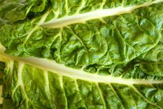 Foods with high levels of vitamin k