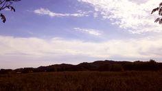 안산갈대습지공원