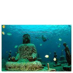 Nusa penida , bali, indonesia Tour agen indonesia More info +6285730289940