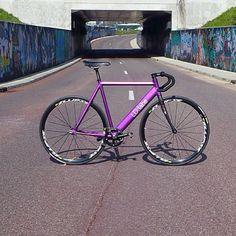Violet frame #fixie