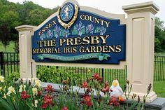 Estelle At Presby Iris Gardens, Montclair NJ  by johnleesandiego, via Flickr