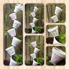 Verticale kruiden tuin 'Drunken Flower Pots'. Ook leuk voor voor uitplanten van de AH moestuintje potjes. Steek een stevige ijzeren staaf diep in de grond. Ik heb de terra cotta potten wit geschilderd en met mod podge er geprinte oude etiketten opgeplakt. Potten rijgen op de ijzer staaf. Voor de zekerheid heb ik onder de bovenste pot een ijzerdraad gespannen naar de schutting voor meer stabiliteit. Je kunt de potten natuurlijk ook vullen met zomerbloeiers. Ook handig voor kleine tuinen.